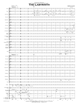 The Labyrinth Score